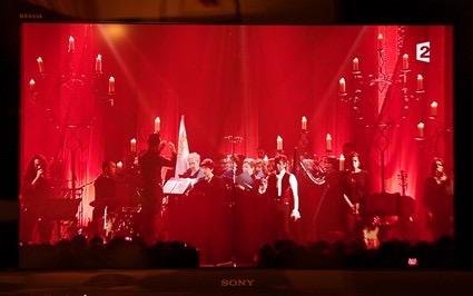25-janv-2013-concert-laurent-voulzy-19-sur-32